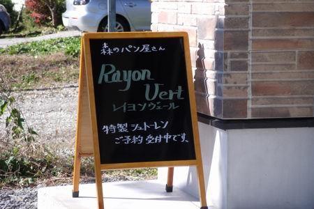 レイヨン1.jpg